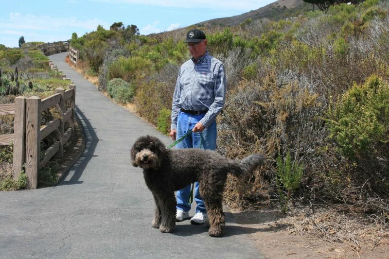 Travel, San Luis Obispo County, California, Shell Beach
