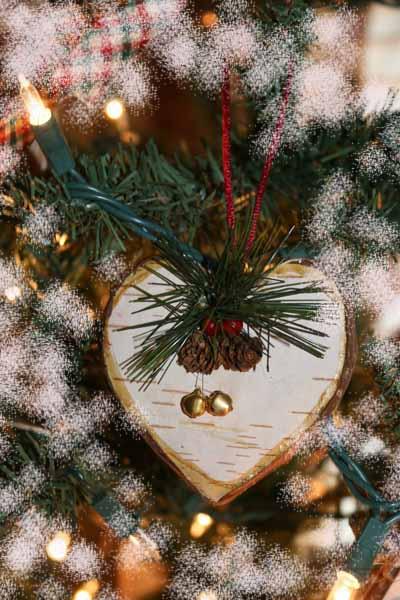 SFW Christmas 2012003a