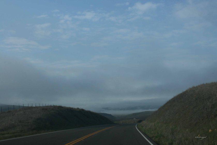 Dec trip to coast 2012006