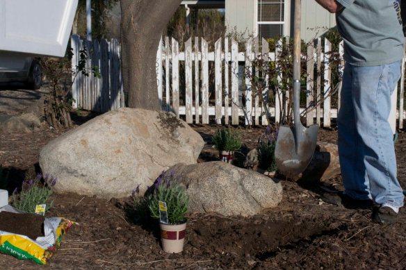 TC Gardening Chores 6
