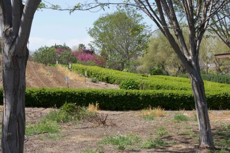 Botanical Gardens at the foot of Bravo Lake