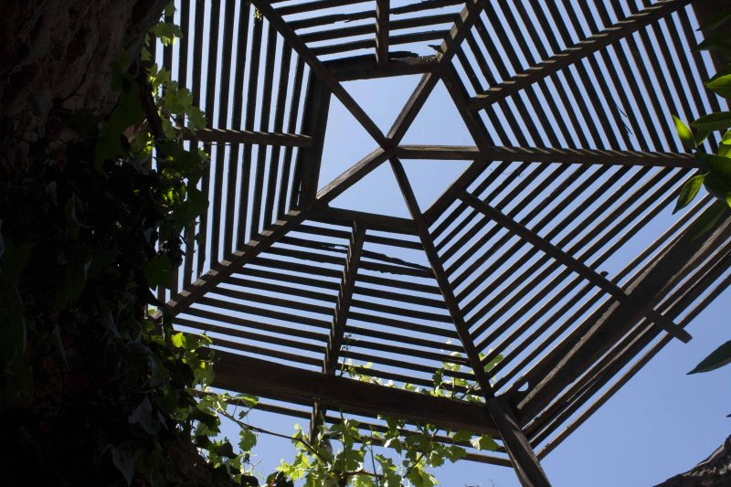 Underground Gardens looking up through a lattice
