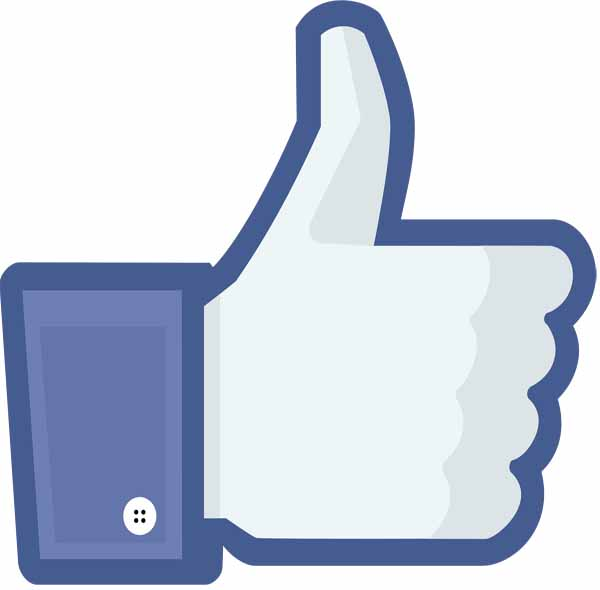 Facebook_like_button_thumb 1