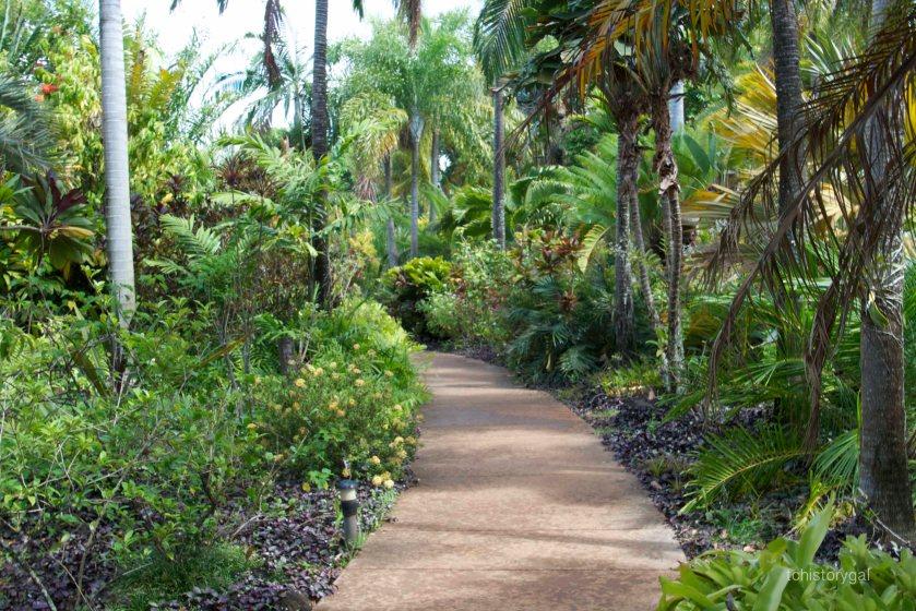 Like a rain forest.  Where's the Bird of Paradise?