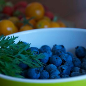 Blueberries gleaned with Sally Pace