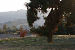 Foothills near Lebec, Bakersfield