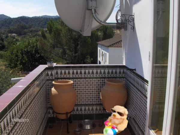 Manny on Ralph's Balcony