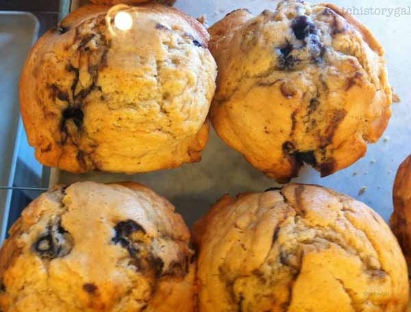 Accidental Vacation 203 muffins