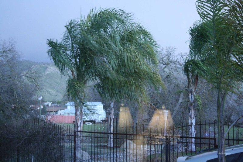 Winter in Bellavista014