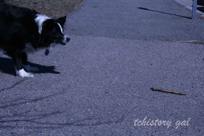 JT and her stick