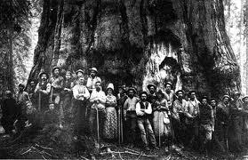 Kaweah Colony
