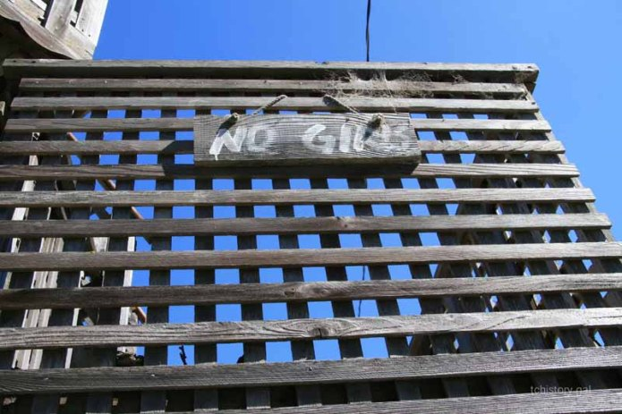 No Girls Treehouse