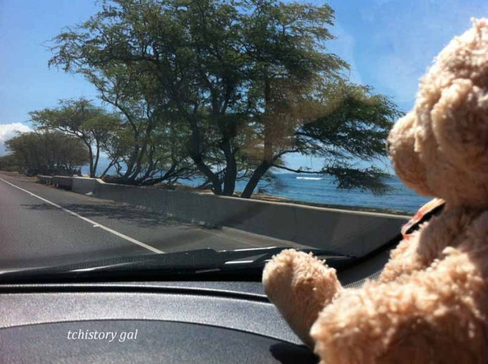 Driving south on Maui Highway 30.
