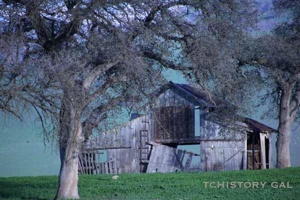 Old barn1
