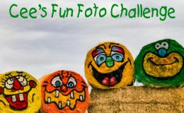 Cees Fun Foto Challenge 2016