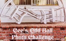 Cee's OddBall