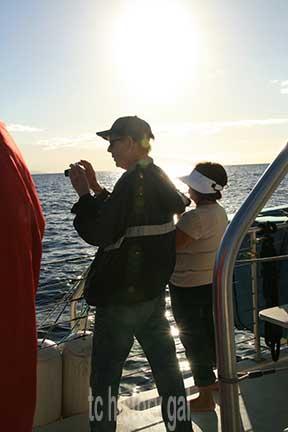 whalewatching 7