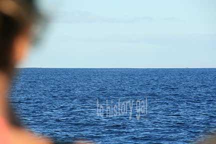 whalewatching 8