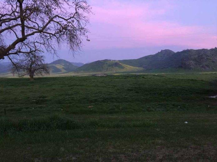 Purple skies in morning