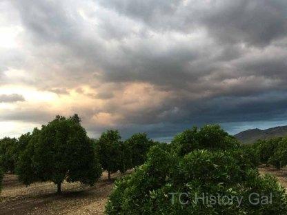 Stormy Sunset in Elderwood112