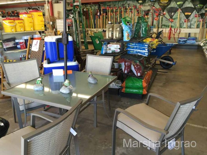 My favorite section was the outdoor furniture and gardening area.