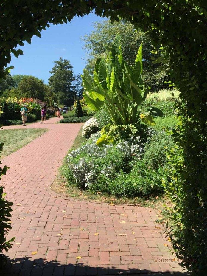 longwood-gardens110