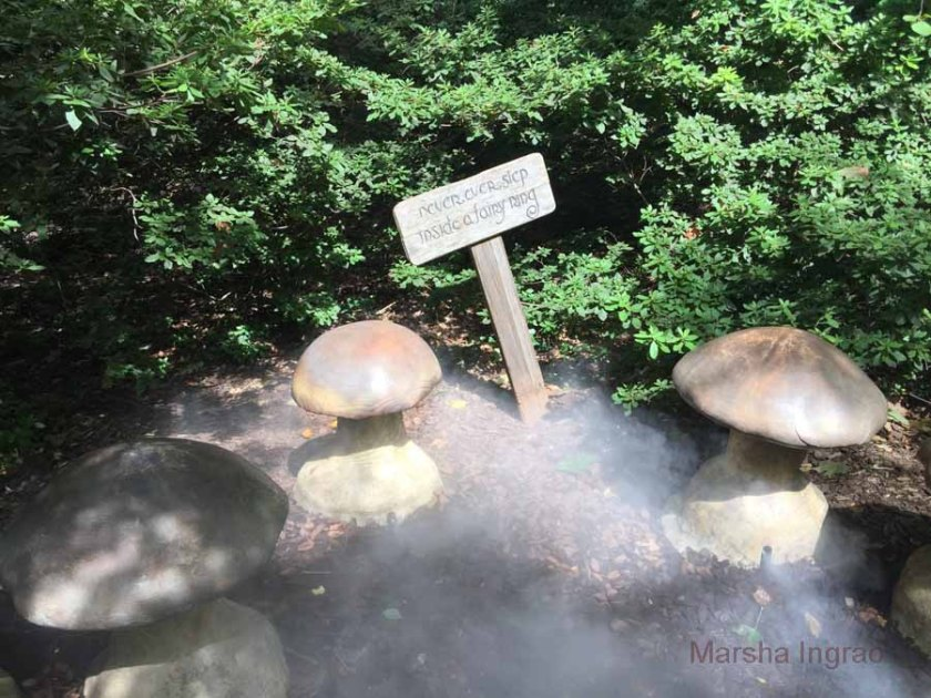 Travel: walking paths Mist pours from beneath the concrete mushrooms inside the fairy ring.