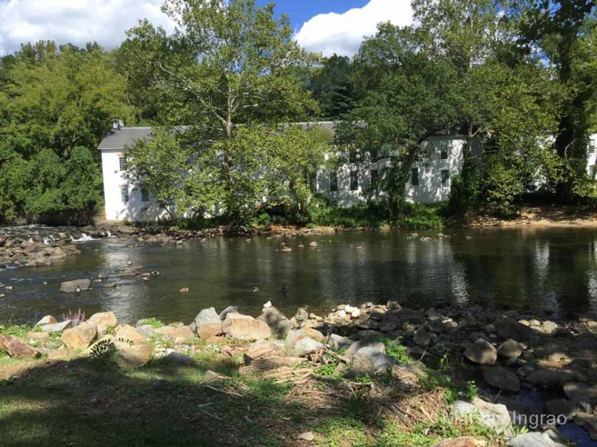 brandywine-river_brecks-mill101