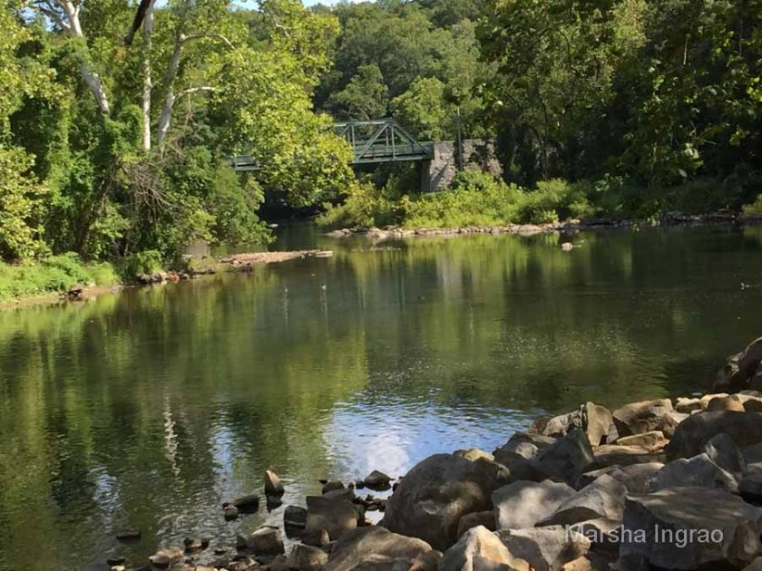 brandywine-river_brecks-mill103