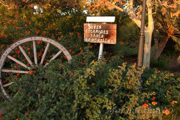 Woodlake Botanical Gardens