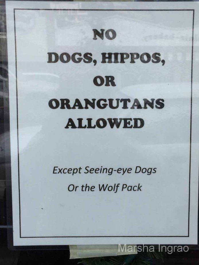 Look what you can't bring shopping with you in Pismo Beach.
