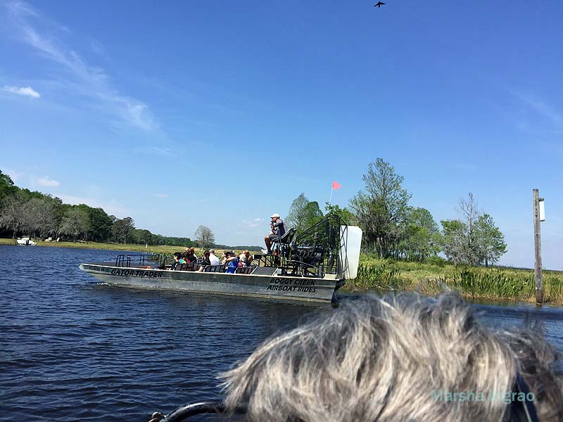 Boggy Creek Airboat tours