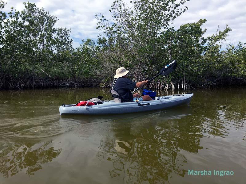 Banana River Kayaking tour