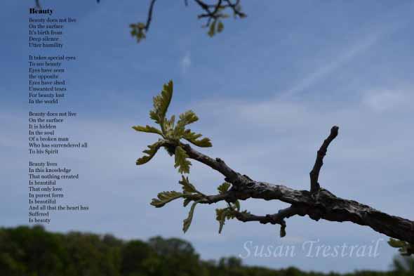 Poetry Inspires Photo