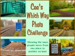 Cee's Which Way Photo challenge banner