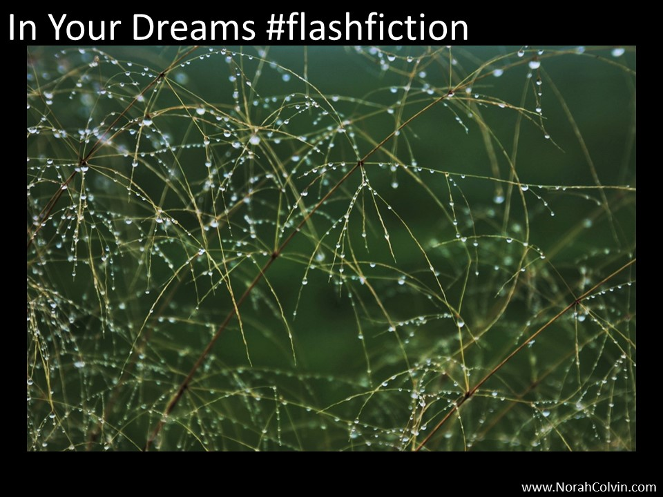 In Your Dreams#flashfiction