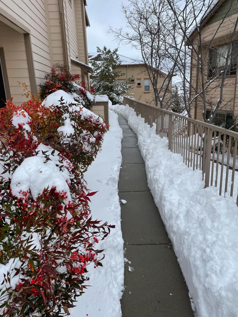 Prescott, snow