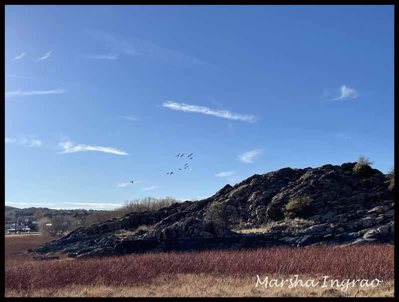 Willow Lake, Prescott,