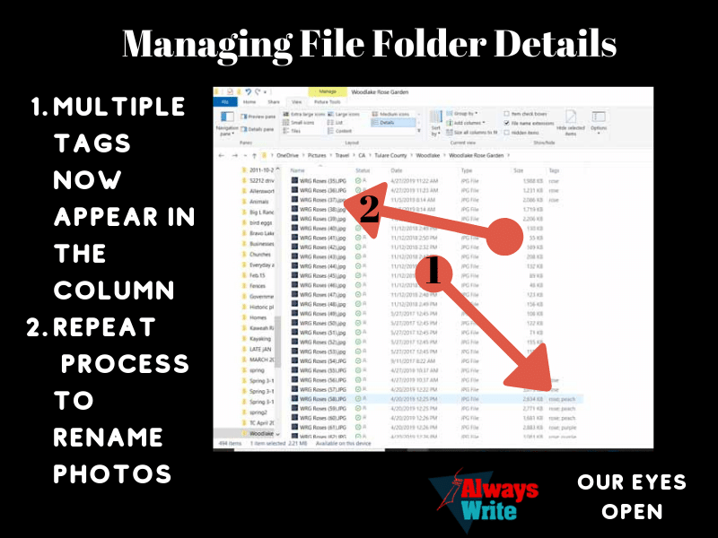 Using folders and tags