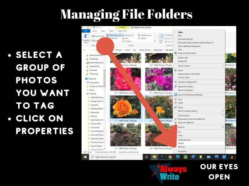 Using Folders & Tags