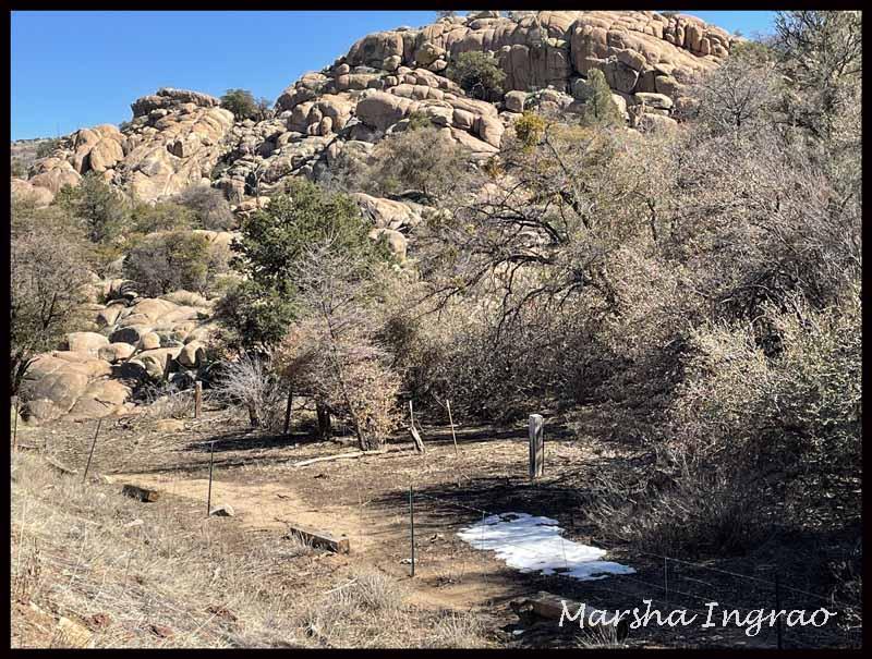Peavine Trail Prescott