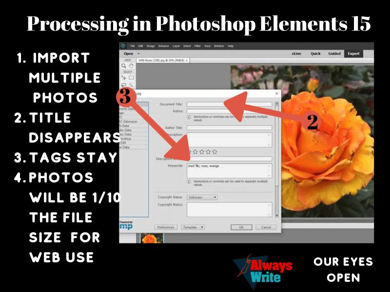 Photoshop Elements15 Instructions