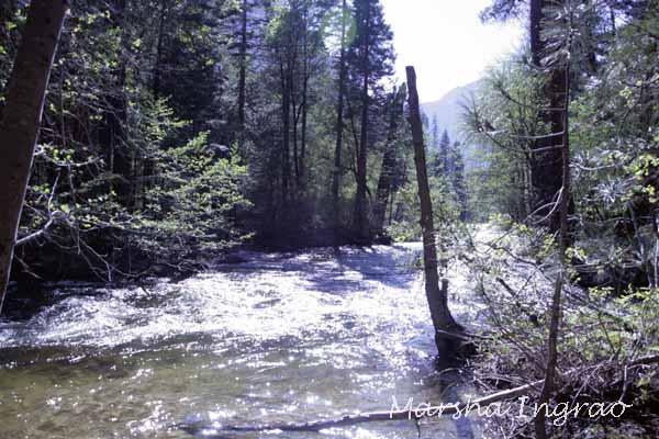 Kings River flowing through Yosemite 5/17/2017