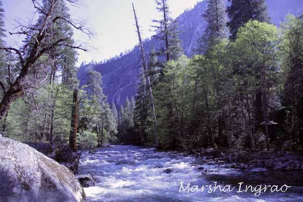 Kings River in Yosemite National Park 05/17/2017