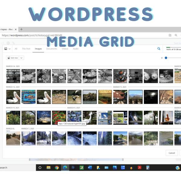 Media Grid form